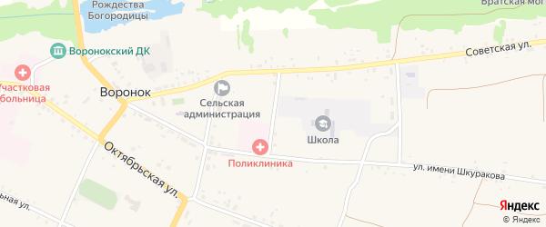 Школьный переулок на карте села Воронка с номерами домов