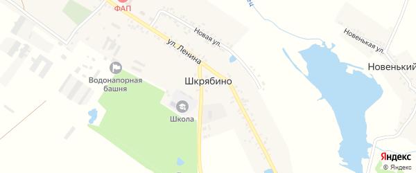 Заозерная улица на карте села Шкрябино с номерами домов
