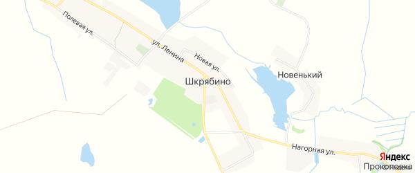 Карта села Шкрябино в Брянской области с улицами и номерами домов