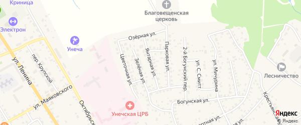 Янтарная улица на карте Унечи с номерами домов