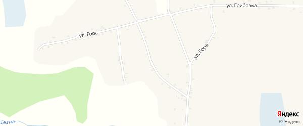 Улица Гора на карте села Костеничей с номерами домов