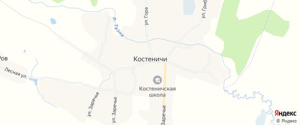 Карта села Костеничей в Брянской области с улицами и номерами домов