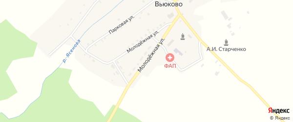 Молодежная улица на карте деревни Вьюково с номерами домов