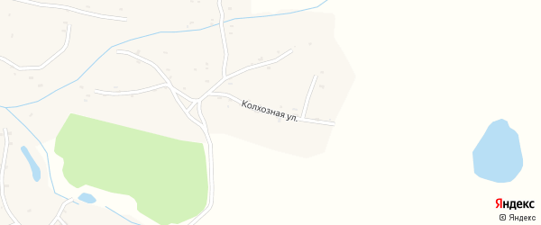 Колхозная улица на карте села Великая Дуброва с номерами домов