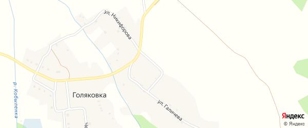 Улица Галичева на карте деревни Голяковки с номерами домов