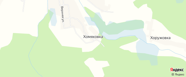 Карта деревни Хомяковки в Брянской области с улицами и номерами домов