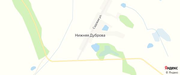 Карта поселка Нижняя Дуброва в Брянской области с улицами и номерами домов