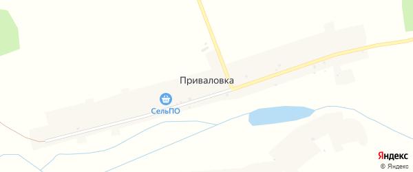 Центральная улица на карте деревни Приваловки с номерами домов