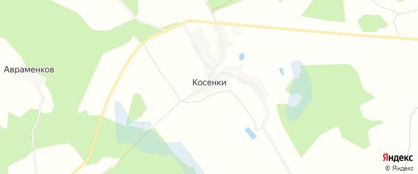 Карта деревни Косенки в Брянской области с улицами и номерами домов