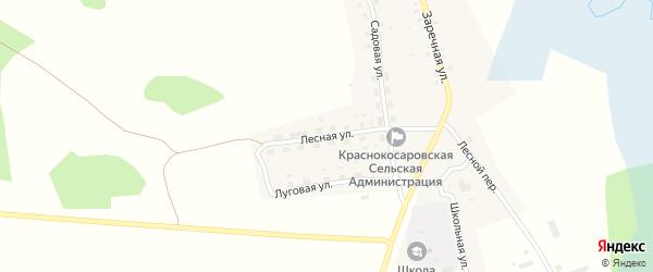 Лесная улица на карте деревни Красные Косары с номерами домов