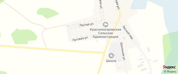Луговая улица на карте деревни Красные Косары с номерами домов