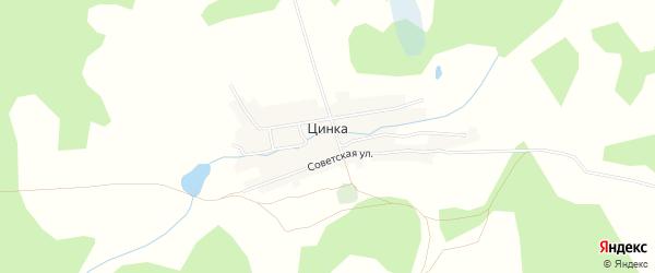 Карта деревни Цинки в Брянской области с улицами и номерами домов