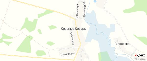 Карта деревни Красные Косары в Брянской области с улицами и номерами домов