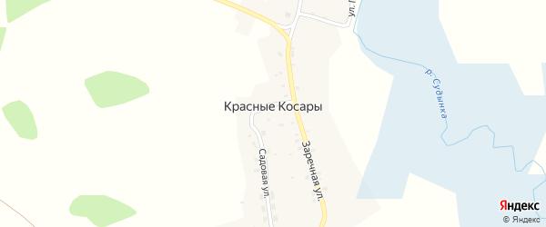 Улица Панизовка на карте деревни Красные Косары с номерами домов