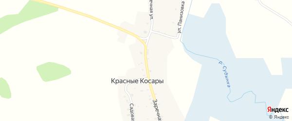 Заречная улица на карте деревни Красные Косары с номерами домов