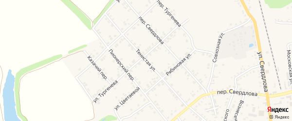 Тенистая улица на карте Стародуб с номерами домов