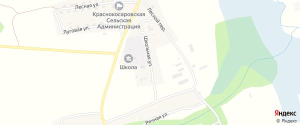 Школьная улица на карте деревни Красные Косары с номерами домов