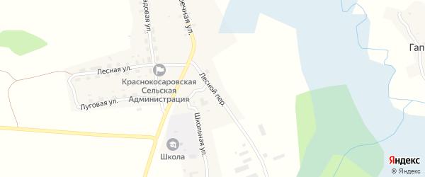 Лесной переулок на карте деревни Красные Косары с номерами домов