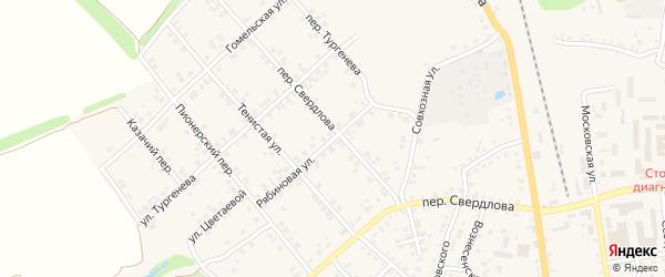 Рябиновая улица на карте Стародуб с номерами домов