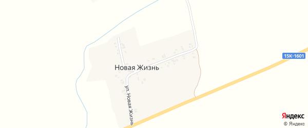 Улица Новая Жизнь на карте поселка Новой Жизни с номерами домов