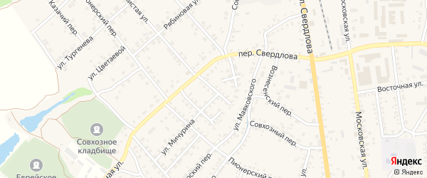 Переулок Мичурина на карте Стародуб с номерами домов
