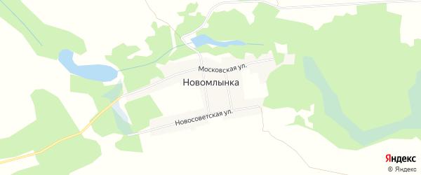 Карта села Новомлынки в Брянской области с улицами и номерами домов