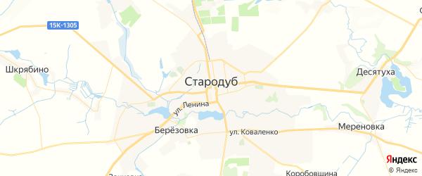 Карта Стародуб с районами, улицами и номерами домов: Стародуб на карте России