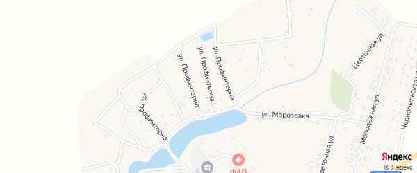 Улица Профинтерна на карте села Симонтовки с номерами домов