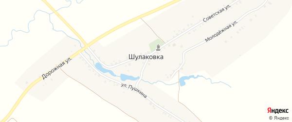 Молодежная улица на карте деревни Шулаковки с номерами домов