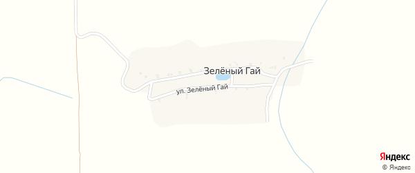 Улица Зеленый Гай на карте поселка Зеленого Гая с номерами домов