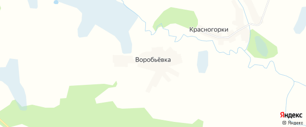 Карта деревни Воробьевки в Брянской области с улицами и номерами домов