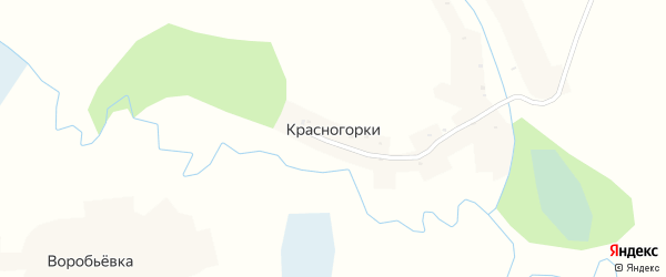 Улица Механизаторов на карте деревни Красногорки с номерами домов