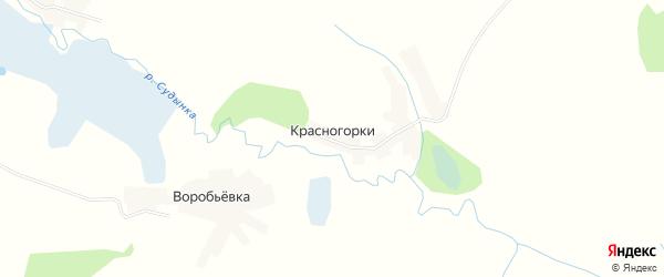 Карта деревни Красногорки в Брянской области с улицами и номерами домов