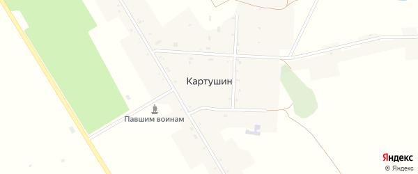 Улица 50 лет Октября на карте села Картушина с номерами домов