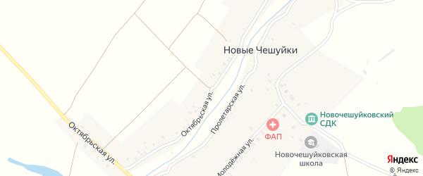 Октябрьская улица на карте села Новые Чешуйки с номерами домов
