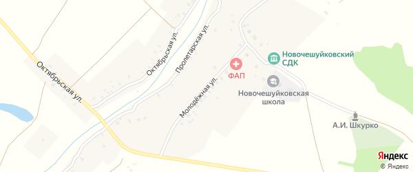 Молодежная улица на карте села Новые Чешуйки с номерами домов