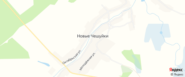 Карта села Новые Чешуйки в Брянской области с улицами и номерами домов