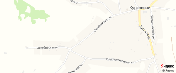 Октябрьская улица на карте села Курковичи с номерами домов