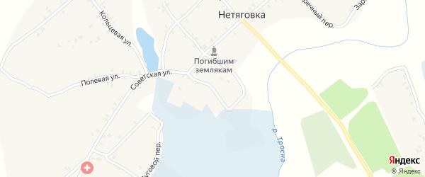 Школьный переулок на карте села Нетяговки с номерами домов