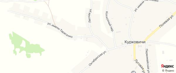 Улица Имени Тарасенко на карте села Курковичи с номерами домов