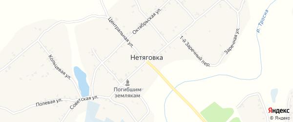 3-й Заречный переулок на карте села Нетяговки с номерами домов