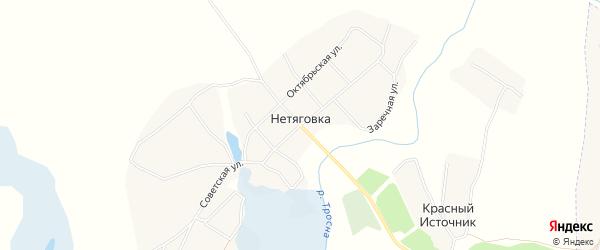 Карта села Нетяговки в Брянской области с улицами и номерами домов
