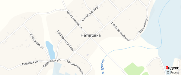 Молодежная улица на карте села Нетяговки с номерами домов