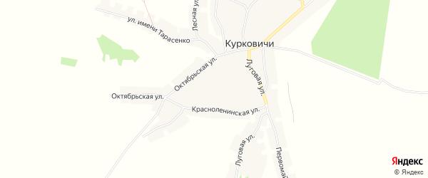 Карта села Курковичи в Брянской области с улицами и номерами домов