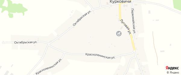 Садовая улица на карте села Курковичи с номерами домов