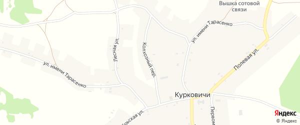 Колхозный переулок на карте села Курковичи с номерами домов