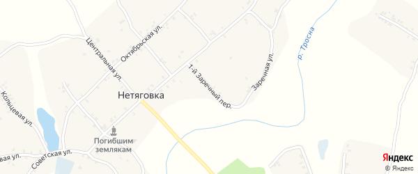 1-й Заречный переулок на карте села Нетяговки с номерами домов