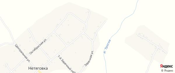 4-й Заречный переулок на карте села Нетяговки с номерами домов
