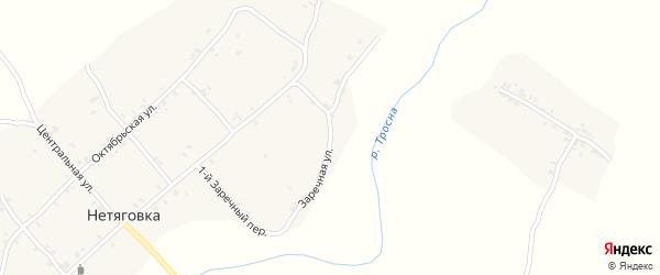 Заречная улица на карте села Нетяговки с номерами домов