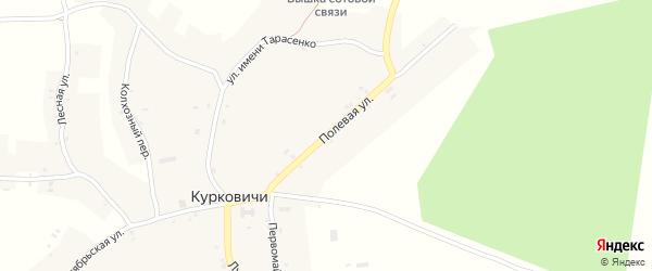 Полевая улица на карте села Курковичи с номерами домов
